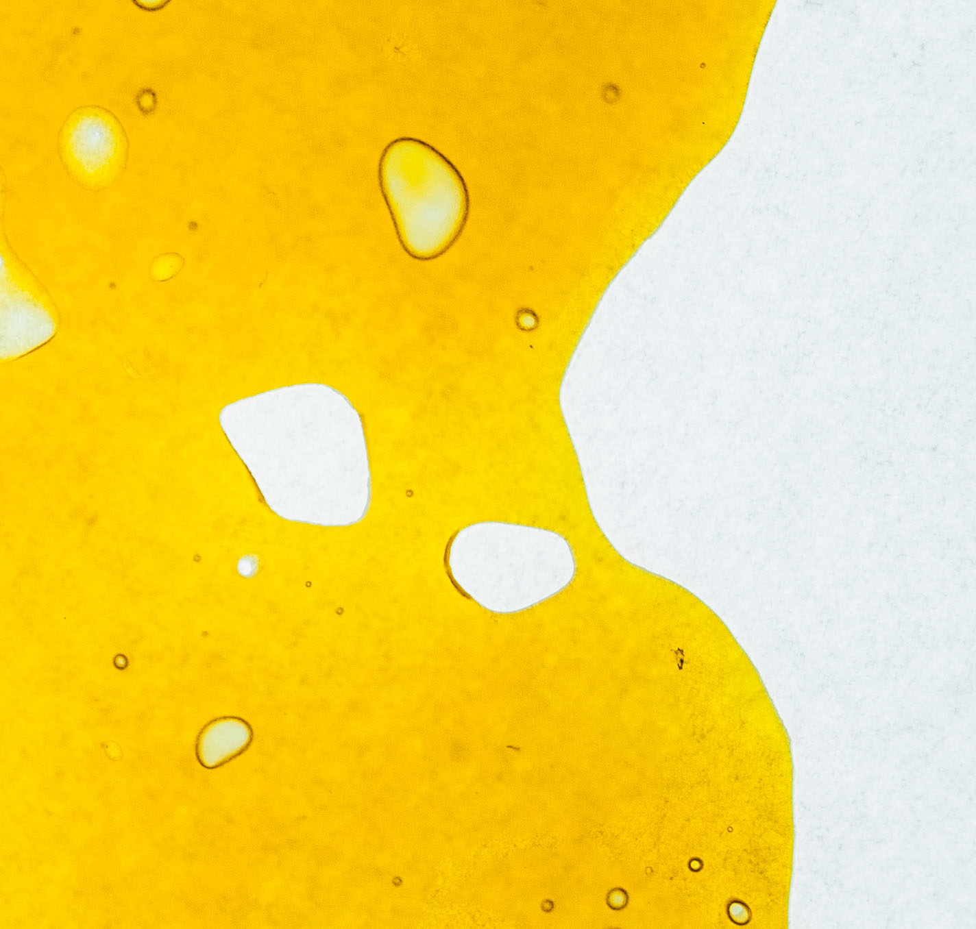 Quality Concentrates shatter